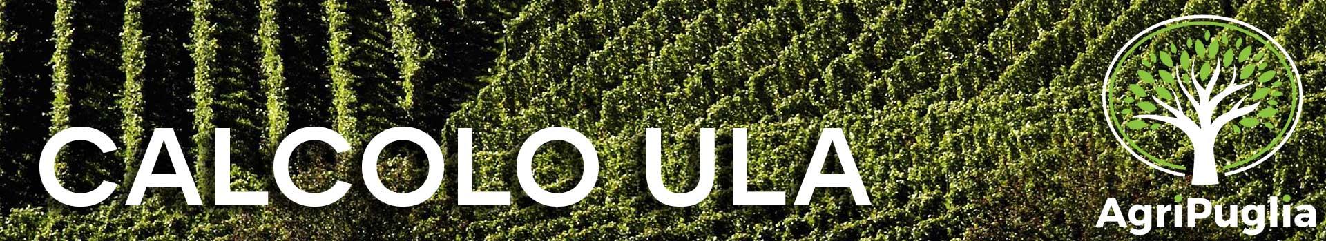 Calcolo ULA Agricoltura Agripuglia